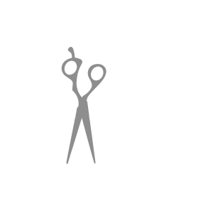 Du Hair Logo Design